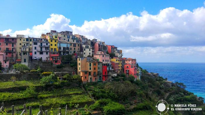 Corniglia en lo alto de los acantilados de Cinque Terre