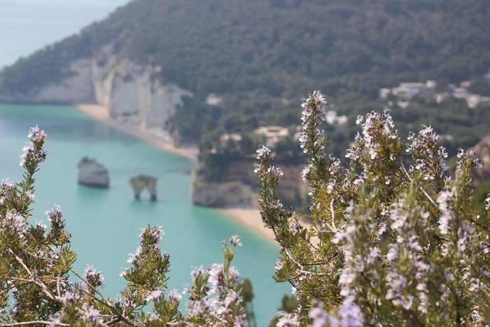 Panorámica dese los acantilados de Baia delle Zagare